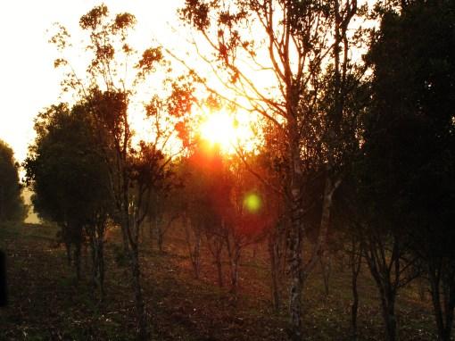 Sempu sunrise